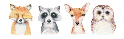 Fototapete Watercolor set of forest cartoon isolated cute baby fox, deer, raccoon and owl animal with flowers. Nursery woodland illustration. Bohemian boho drawing for nursery poster, pattern