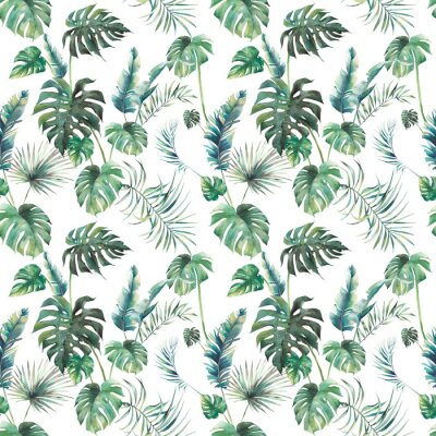 Fototapete Watercolor tropical leaves surface design. Exotic monstera and palm green branches texture on white background. Summer plants seamless pattern