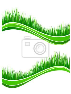 Waves von frischem grünen Gras Frühjahr