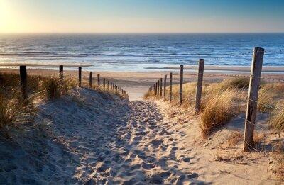 Fototapete Weg zum Nordseestrand in Gold Sonnenschein