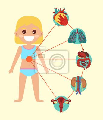 Weibliche gesundheit medizinische plakat mit kind körper anatomie ...