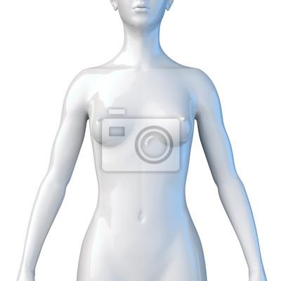 Weiblicher oberkörper - schultern, brust und bauch fototapete ...