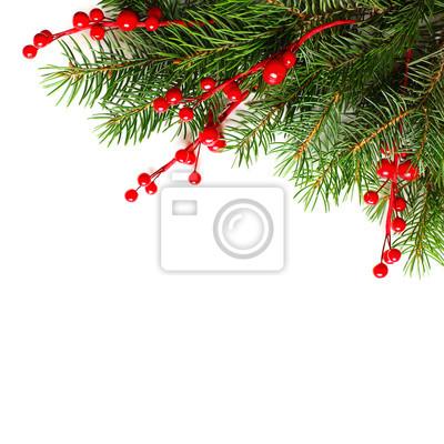 Weihnachten Hintergrund.Fototapete Weihnachten Hintergrund Mit Weihnachtsbaum Zweig Und Roten Beeren