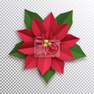 Weihnachtsstern Papier Weihnachtsstern Rote Blume Vektor