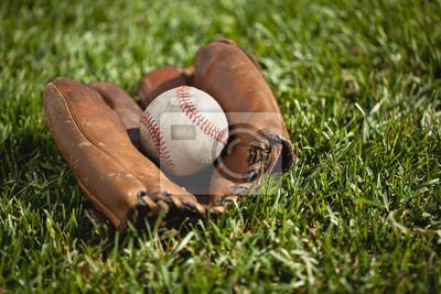 Weinlese-Baseball-Handschuh mit einem alten Ball in das Gras