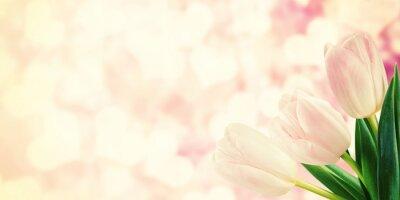 Fototapete Weinlese-Postkarte mit Tulpe-Blumen