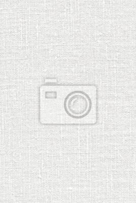 Weiß Stoff Textur