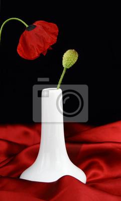 Weiße Vase mit Knospe Mohnblüte