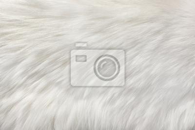 Fototapete weißer natürlicher Pelzhintergrund