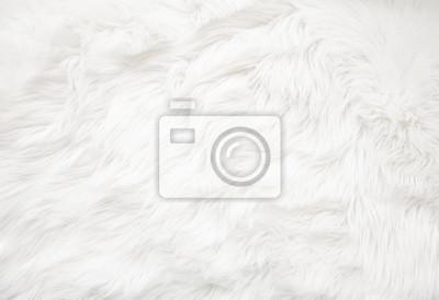 Fototapete White fur texture