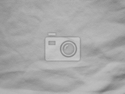 Fototapete White Grey Gradient abstract studio background textured light defocus view