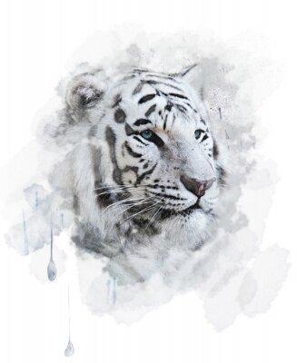 Fototapete White Tiger