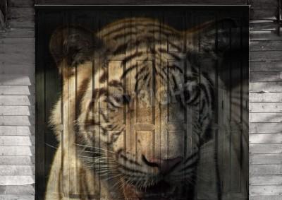 """White tiger"" Mural. Das Holz Malerei Konzept"