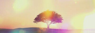 Fototapete Widescreen Sonnenuntergang Baum Landschaft mit Retro-Effekt
