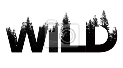 Fototapete Wild word made from outdoor wilderness treetop lettering