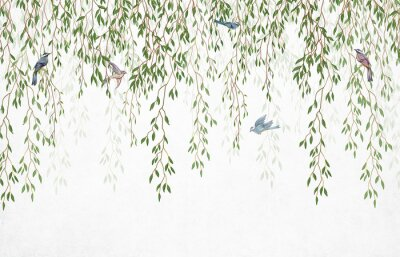 Fototapete Willow branches hanging from above with birds on a white background. Wallpaper, murals and wall paintings for interior printing.