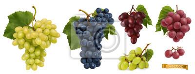 Fototapete Wine grapes, table grapes. Fresh fruit, 3d realistic vector set