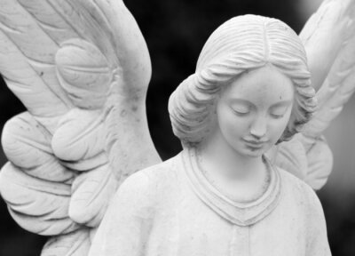 Fototapete  winged angelic statue detail of face and wings