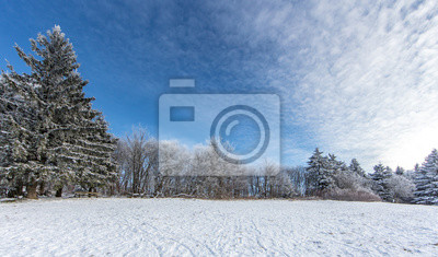 Winter Fototapete Fototapeten Priester Tanne Alpen Myloview De
