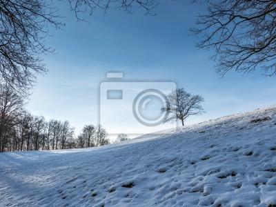 Winter Fototapete Fototapeten Wetter Tag Feld Myloview De