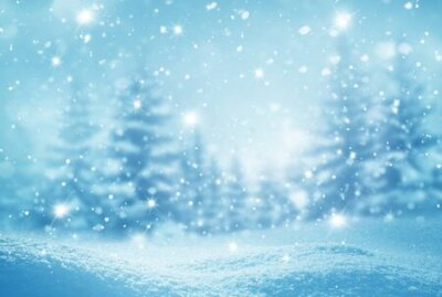 Fototapete Winter  background .Merry Christmas and happy New Year greeting card with copy-space. Christmas landscape with snow and fir trees
