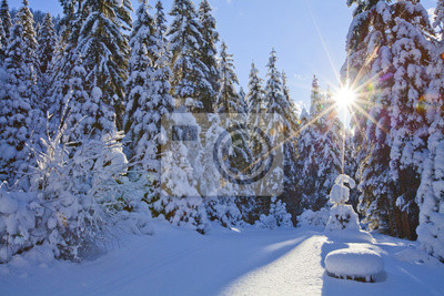 Winter Impressionen 1 Fototapete Fototapeten Winterlandschaft