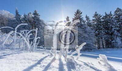 Winter In Deutschland Fototapete Fototapeten Hercules Wintersport