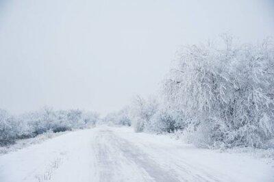 Fototapete Winter landscape. Dirt road in the forest in winter