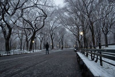 Fototapete Winter landscape in Central Park. New York City. USA