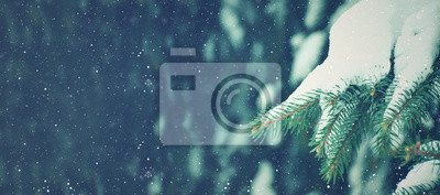 Fototapete Winter Season Holiday Evergreen Christmas Tree Pine Branches Covered With Snow and Falling Snowflakes, Horizontal