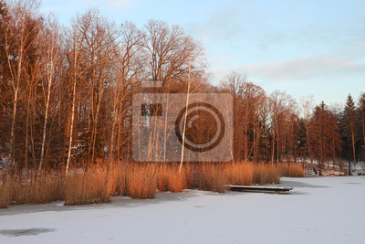 Winter See Sonne Wolken Wald Fototapete Fototapeten