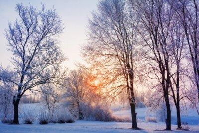 Fototapete Winter Sonnenuntergang