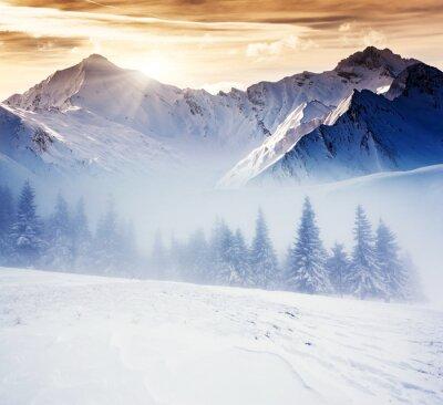 Fototapete Winterreifen