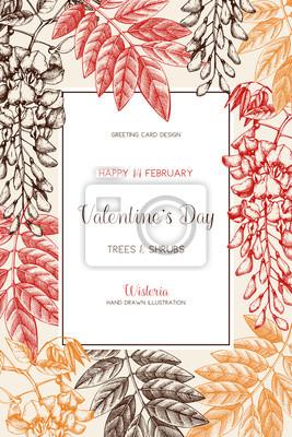 Wisteria Skizze Hintergrund Valentinstag Karte Oder Einladung