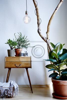 Fototapete Wohnzimmer Design Vintage Und Moderne Mischung Mit Vielen  Pflanzen In Sonniger Atmosphäre