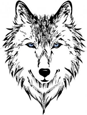 Fototapete Wolf head