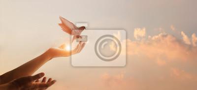 Fototapete Woman praying and free bird enjoying nature on sunset background, hope concept