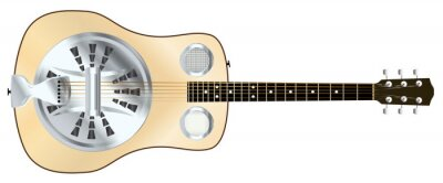 Wood Top Resonator Acoustic Guitar