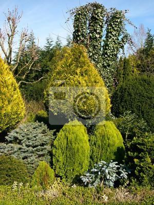 Wunderschoner Garten Mit Seltenen Baumen Im Wasserpark Am Iberg