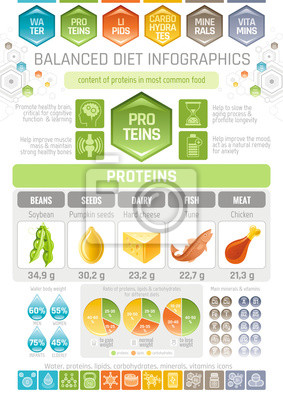 Proteine Diat Infografik Diagramm Poster Wasser Protein Lipid