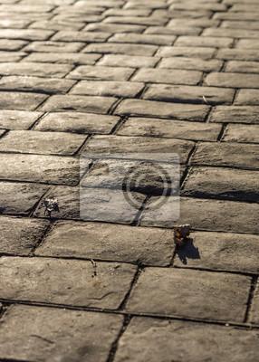 fototapete stempel betonpflaster im freien mimik pflastersteine muster bodenbelge auen dekorative - Pflastersteine Muster Bilder