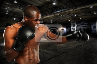 Yopung African American Boxer