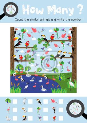 Zählen spiel von niedlichen vögeln tiere für vorschule kinder ...
