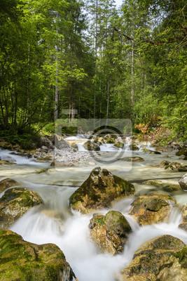 Fototapete zauberwald  Zauberwald - berchtesgaden fototapete • fototapeten bavaria, Alpen ...
