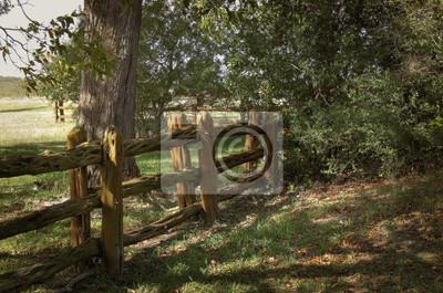 Zaun Aus Asten Fototapete Fototapeten Fussweg Landlichen Baum