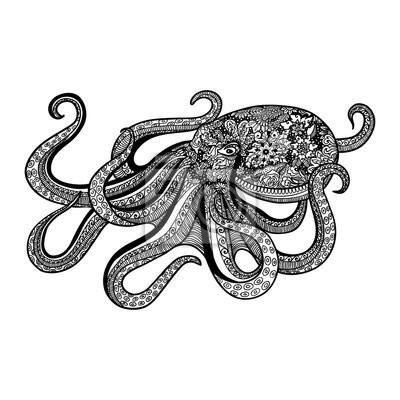 Zentangle-stil oktopus hand gezeichnet illustration der meer-tier ...
