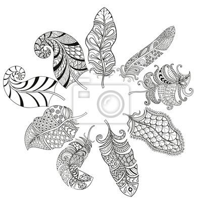 Zentangle stilisierte verschiedene federn für malvorlagen. hand ...
