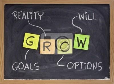 Ziele, Wirklichkeit, Optionen, wird