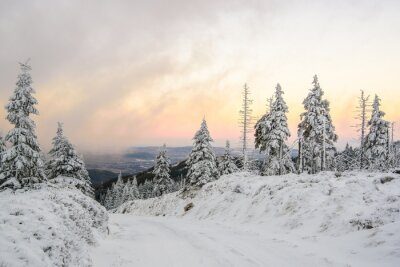 Fototapete Zimowa droga w górach