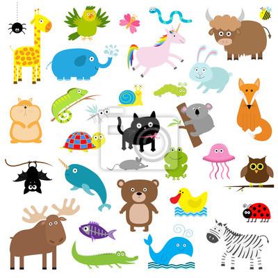 Zoo Tier-Set. Nette Zeichentrickfilm-Figuransammlung. Isoliert. Weißer Hintergrund. Baby Kinder Bildung. Alligator, Bär, Katze, Ente, Elefant Frosch Giraffe Hamster iguana Fuchs Koala Eule Fledermaus